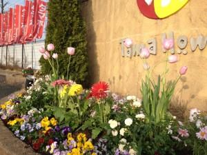 タマホームさんの花壇