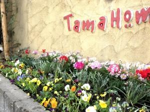 タマホームさまの花壇