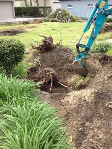 お庭の木を伐採処分しました