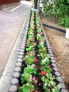 花壇に植え込み