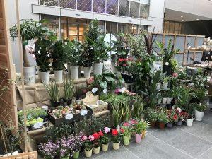 ガーデンパーティー25